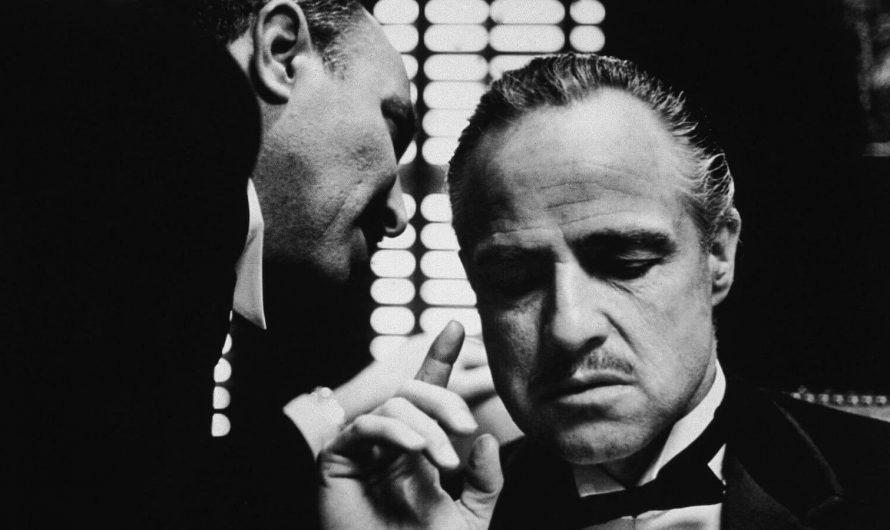教父 The Godfather 小說讀後感